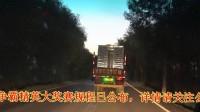 宏翔公棚9月1日第七站50公里訓放